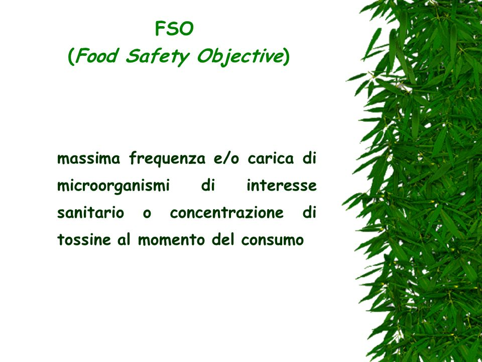 FSO (Food Safety Objective)