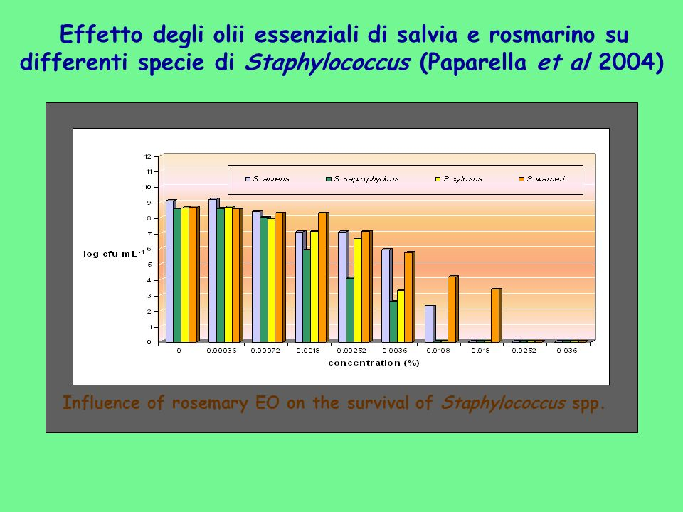 Influence of rosemary EO on the survival of Staphylococcus spp.