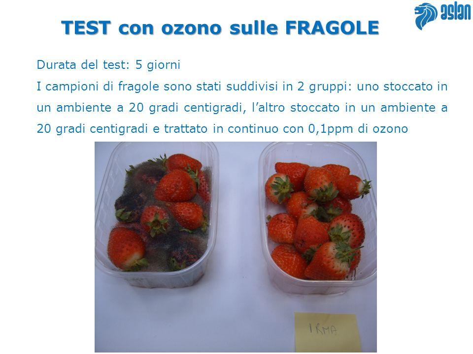 TEST con ozono sulle FRAGOLE