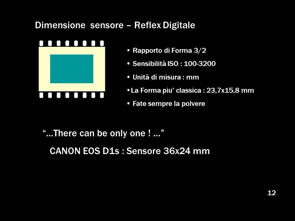 Dimensione sensore – Reflex Digitale