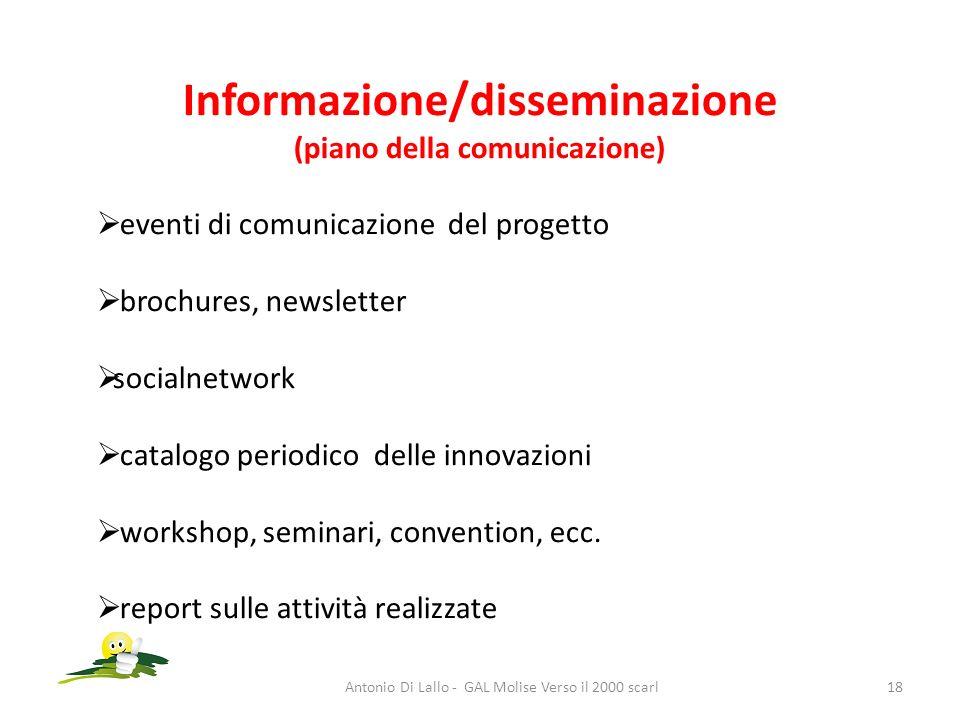 Informazione/disseminazione (piano della comunicazione)