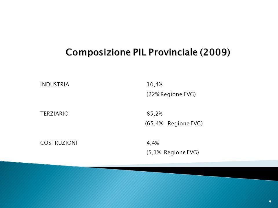 Composizione PIL Provinciale (2009)