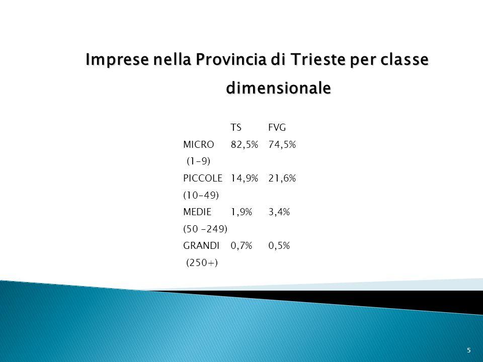 Imprese nella Provincia di Trieste per classe dimensionale