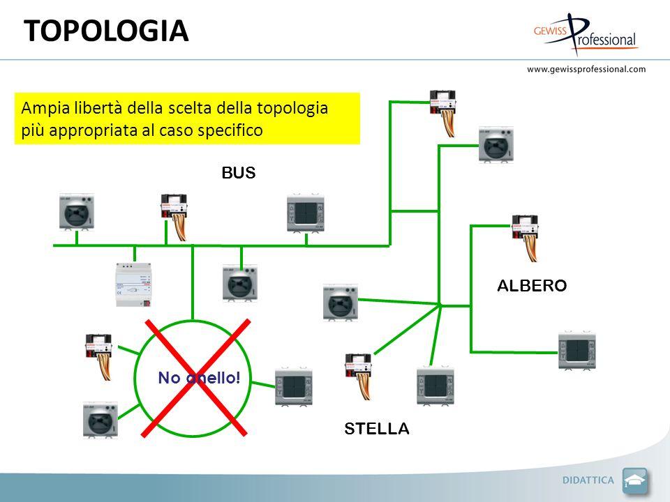 TOPOLOGIA ALBERO. Ampia libertà della scelta della topologia più appropriata al caso specifico. BUS.