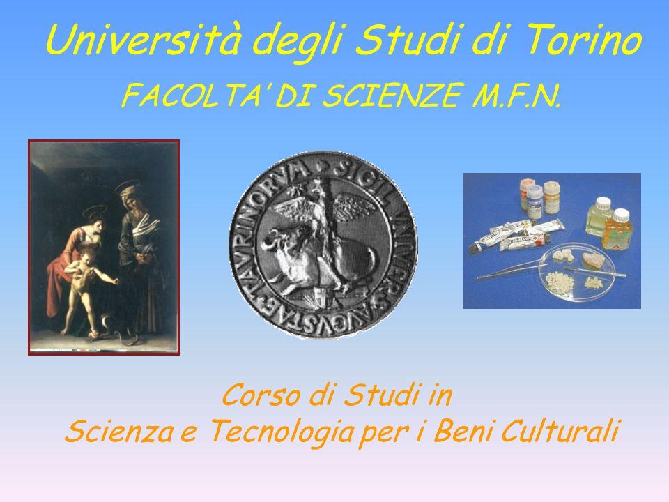Università degli Studi di Torino FACOLTA' DI SCIENZE M.F.N.