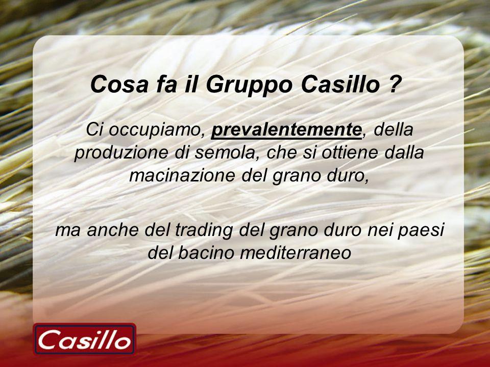 Cosa fa il Gruppo Casillo