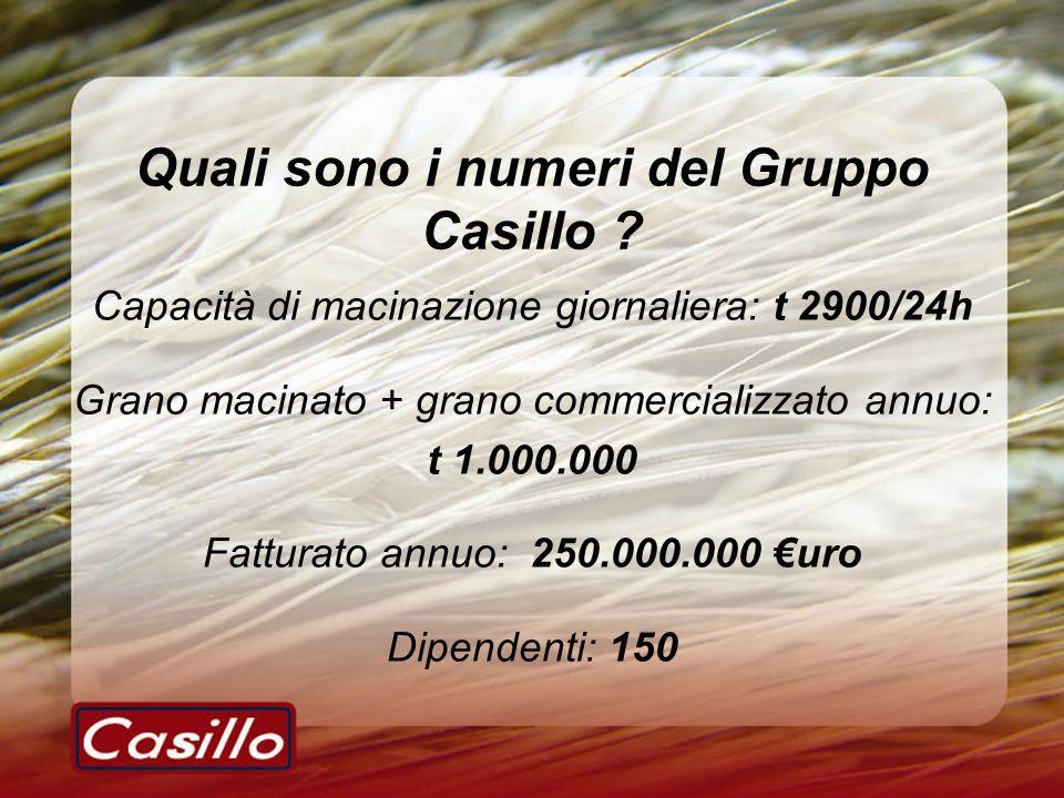 Quali sono i numeri del Gruppo Casillo