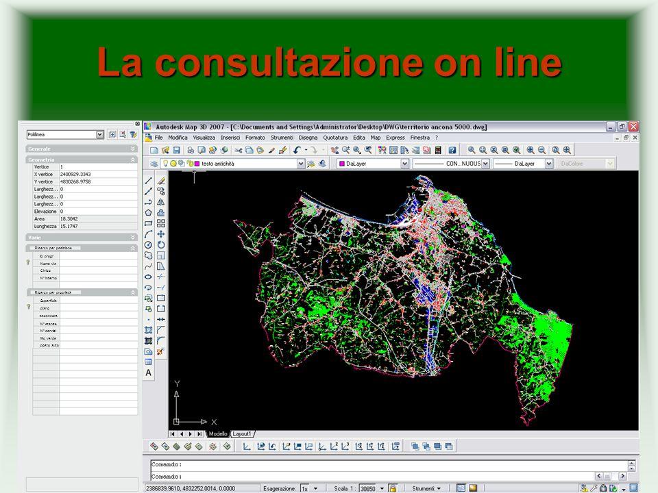 La consultazione on line