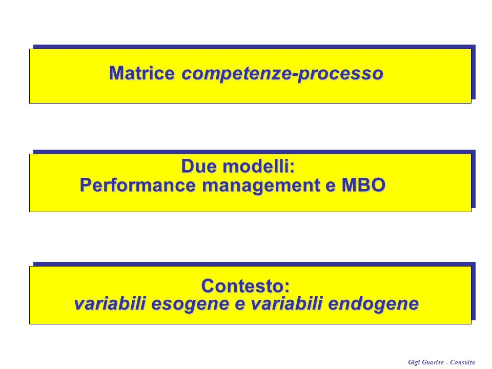 Matrice competenze-processo variabili esogene e variabili endogene