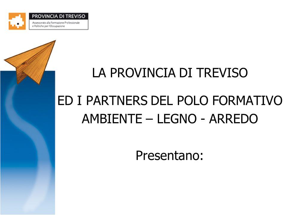 LA PROVINCIA DI TREVISO ED I PARTNERS DEL POLO FORMATIVO
