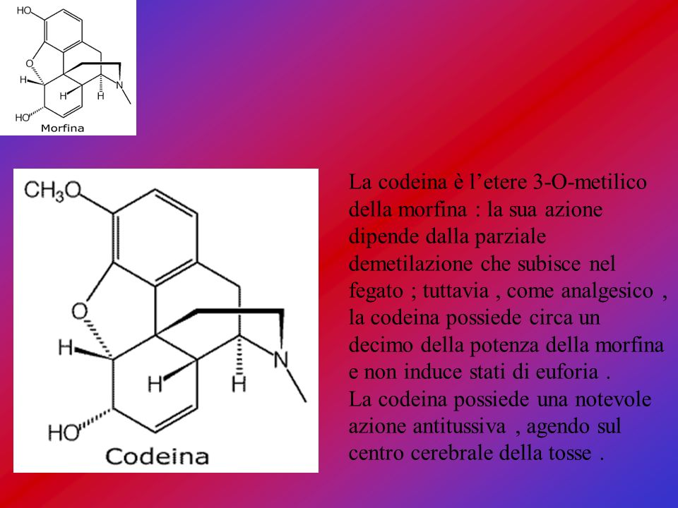 La codeina è l'etere 3-O-metilico della morfina : la sua azione dipende dalla parziale demetilazione che subisce nel fegato ; tuttavia , come analgesico , la codeina possiede circa un decimo della potenza della morfina e non induce stati di euforia .