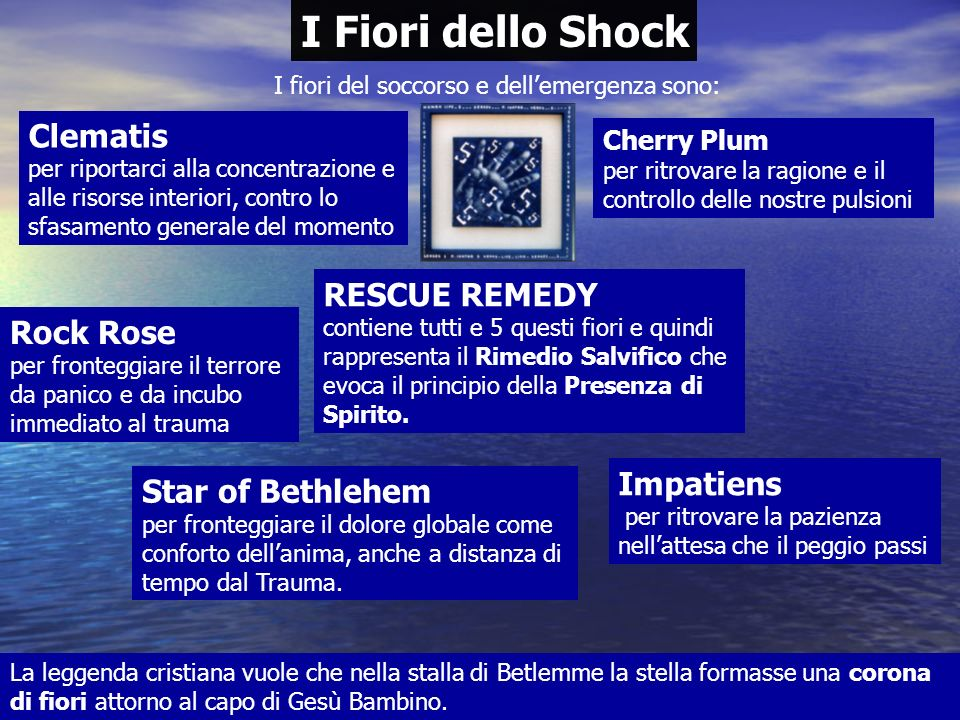 I Fiori dello Shock Clematis RESCUE REMEDY Rock Rose Impatiens