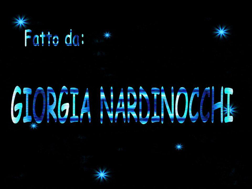 Fatto da: GIORGIA NARDINOCCHI