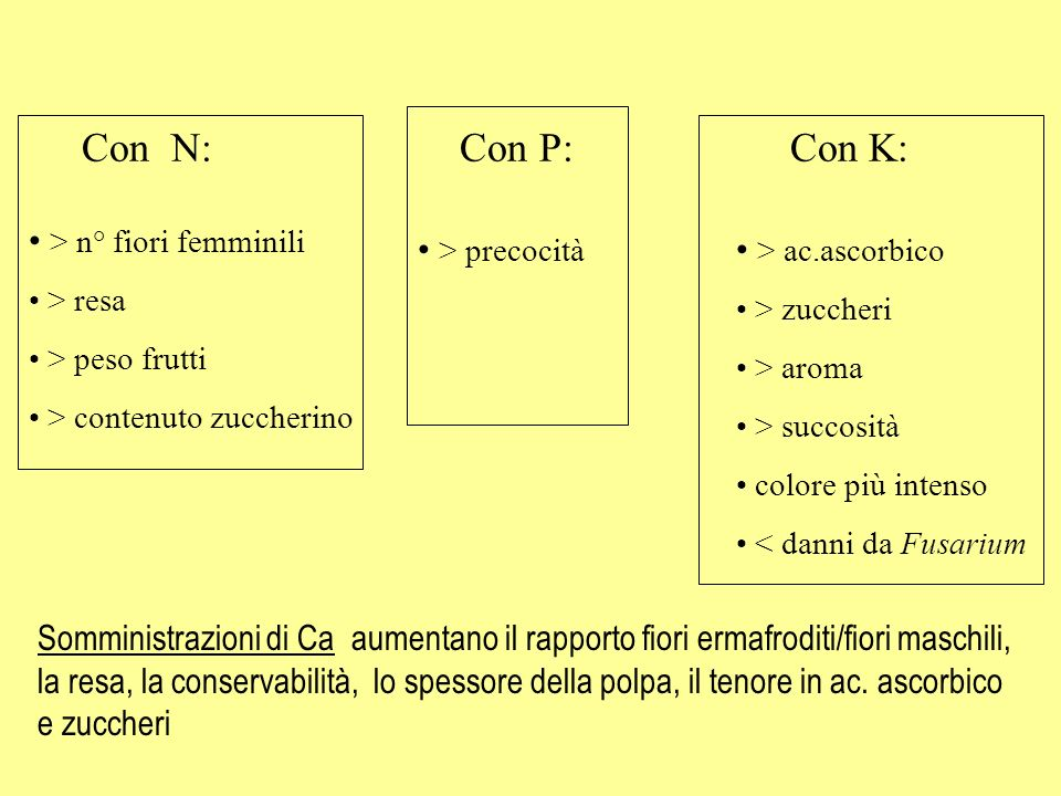 Con N: Con P: Con K: > n° fiori femminili > precocità