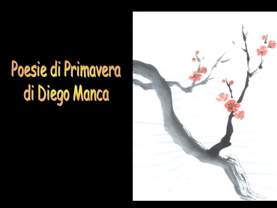 Poesie di Primavera di Diego Manca