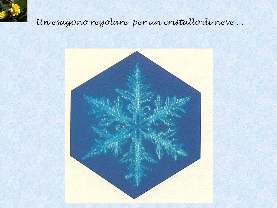 Un esagono regolare per un cristallo di neve …