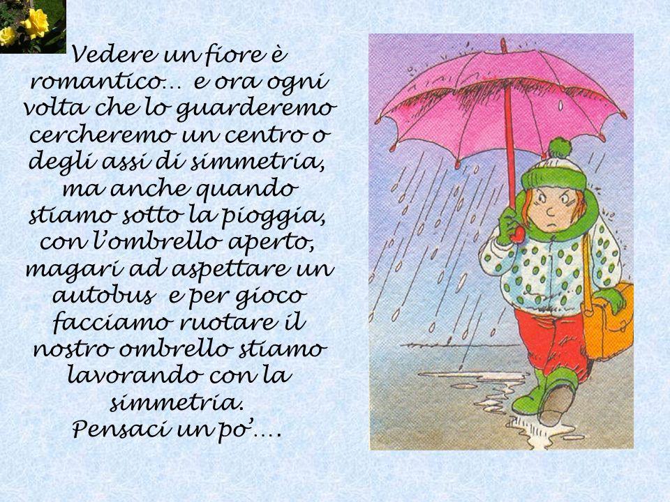 Vedere un fiore è romantico… e ora ogni volta che lo guarderemo cercheremo un centro o degli assi di simmetria, ma anche quando stiamo sotto la pioggia, con l'ombrello aperto, magari ad aspettare un autobus e per gioco facciamo ruotare il nostro ombrello stiamo lavorando con la simmetria.