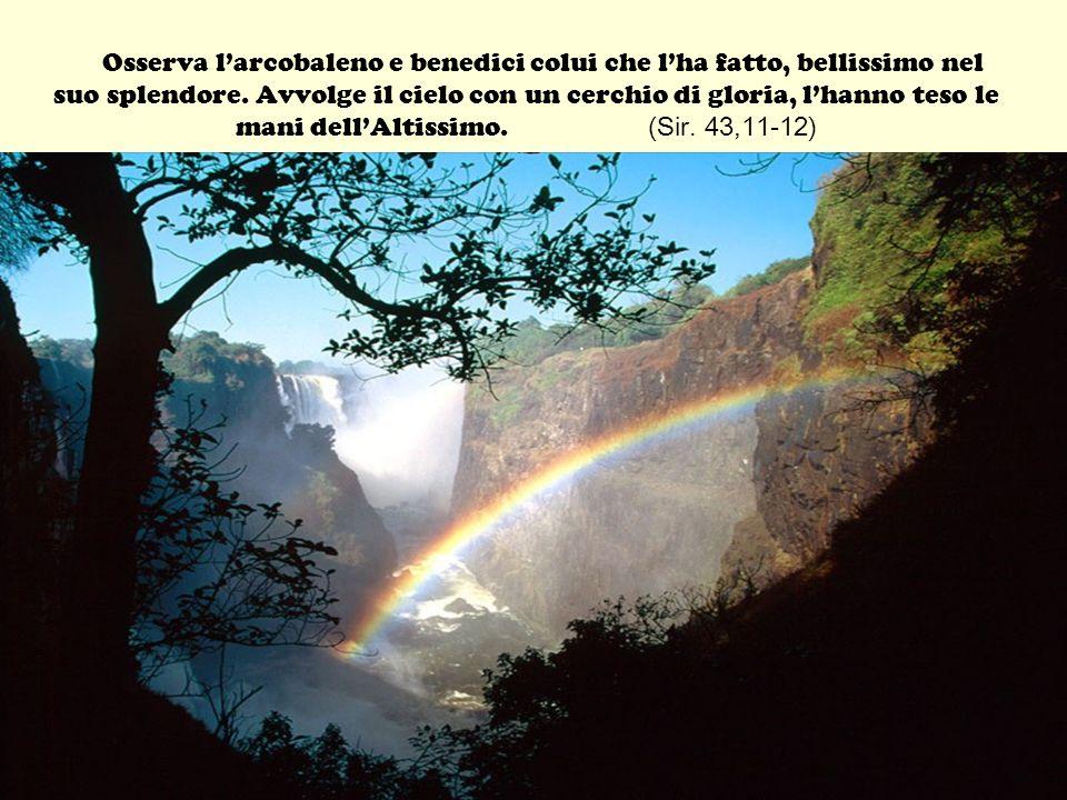 Osserva l'arcobaleno e benedici colui che l'ha fatto, bellissimo nel suo splendore.