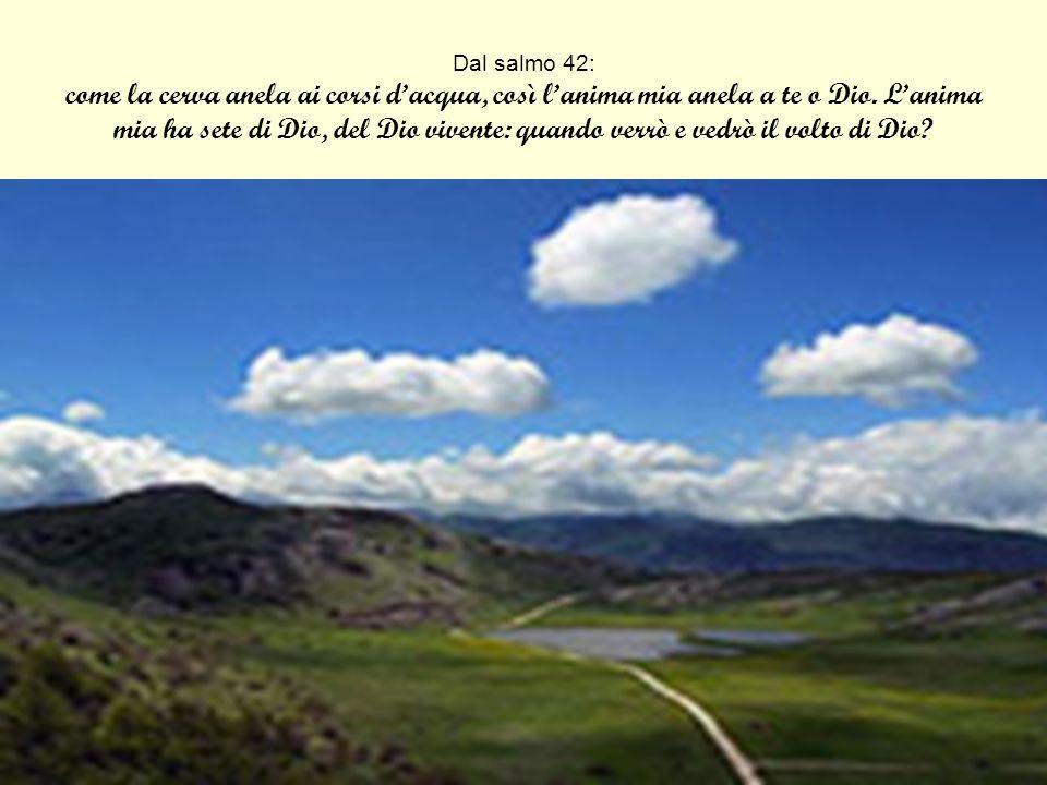 Dal salmo 42: come la cerva anela ai corsi d'acqua, così l'anima mia anela a te o Dio.