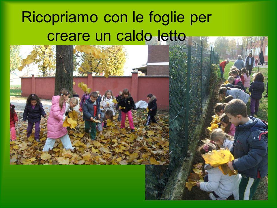 Ricopriamo con le foglie per creare un caldo letto