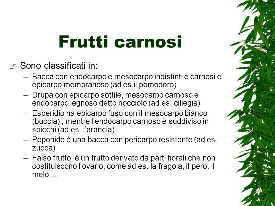 Frutti carnosi Sono classificati in: