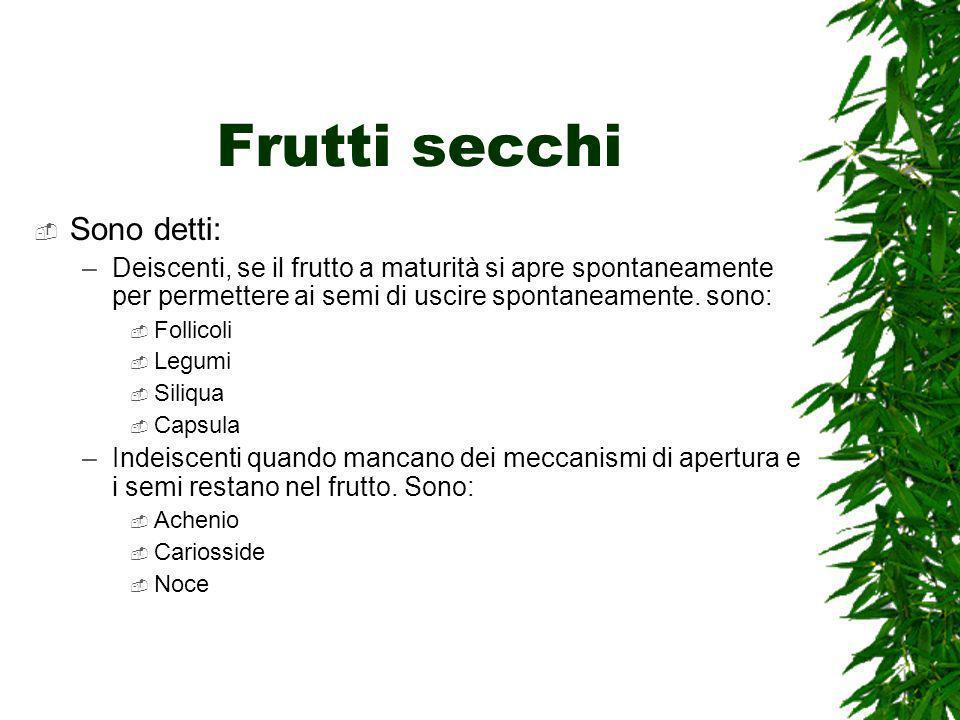 Frutti secchi Sono detti: