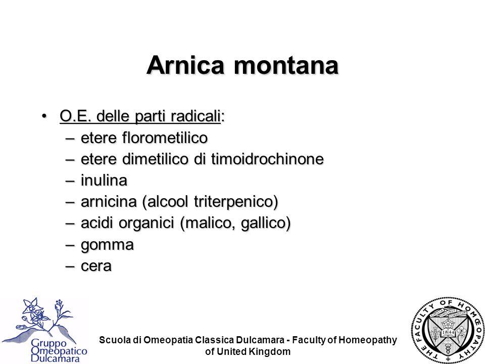 Arnica montana O.E. delle parti radicali: etere florometilico