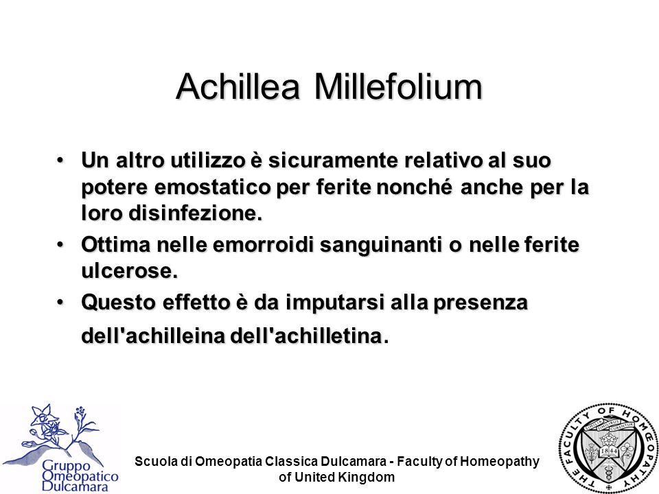 Achillea Millefolium Un altro utilizzo è sicuramente relativo al suo potere emostatico per ferite nonché anche per la loro disinfezione.
