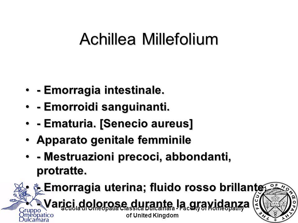 Achillea Millefolium - Emorragia intestinale. - Emorroidi sanguinanti.