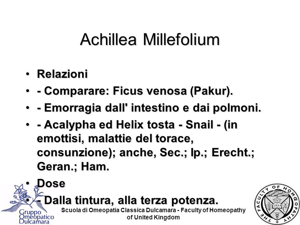 Achillea Millefolium Relazioni - Comparare: Ficus venosa (Pakur).
