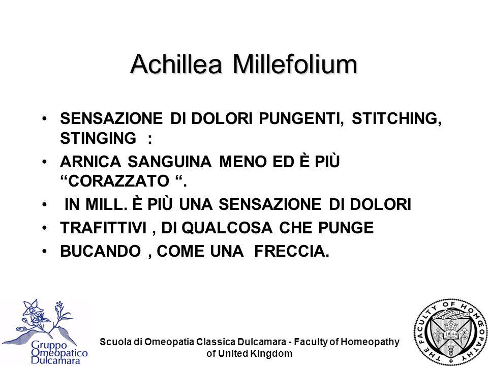 Achillea Millefolium SENSAZIONE DI DOLORI PUNGENTI, STITCHING, STINGING : ARNICA SANGUINA MENO ED È PIÙ CORAZZATO .