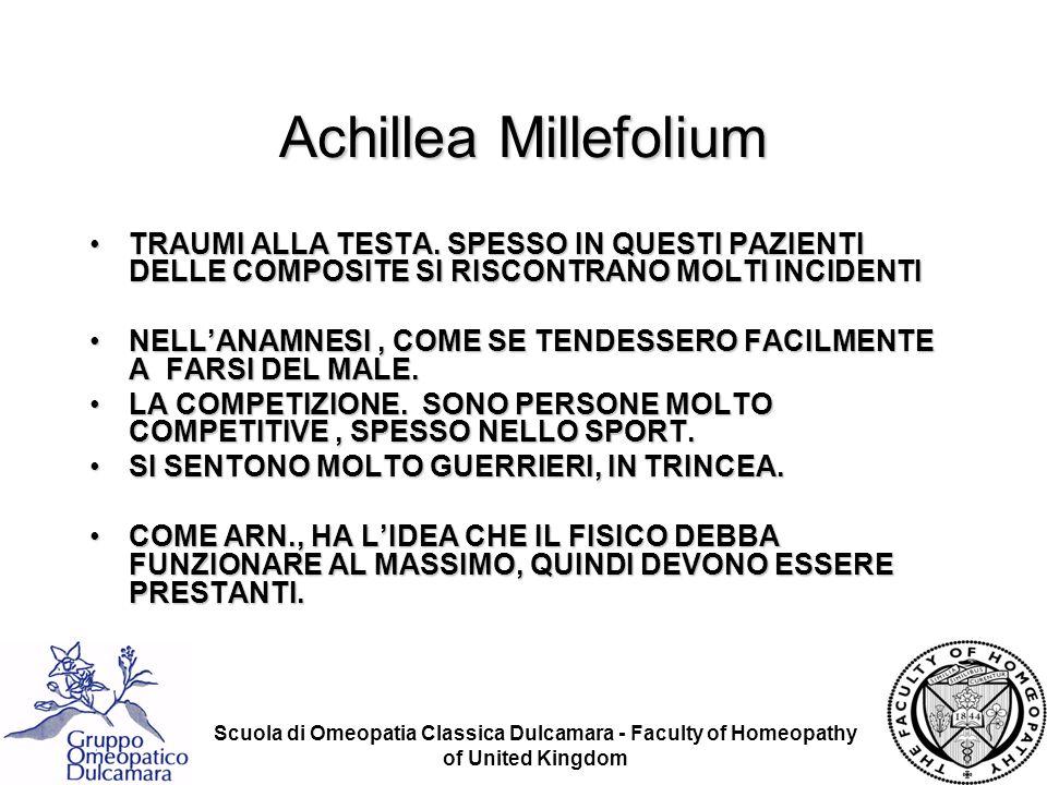 Achillea Millefolium TRAUMI ALLA TESTA. SPESSO IN QUESTI PAZIENTI DELLE COMPOSITE SI RISCONTRANO MOLTI INCIDENTI.