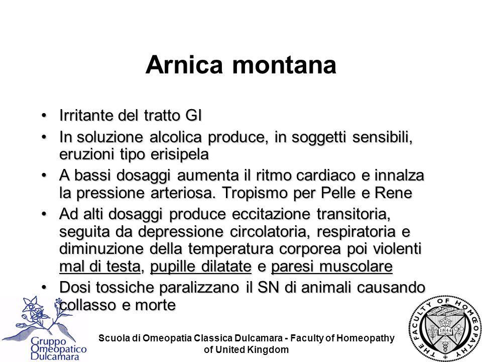 Arnica montana Irritante del tratto GI