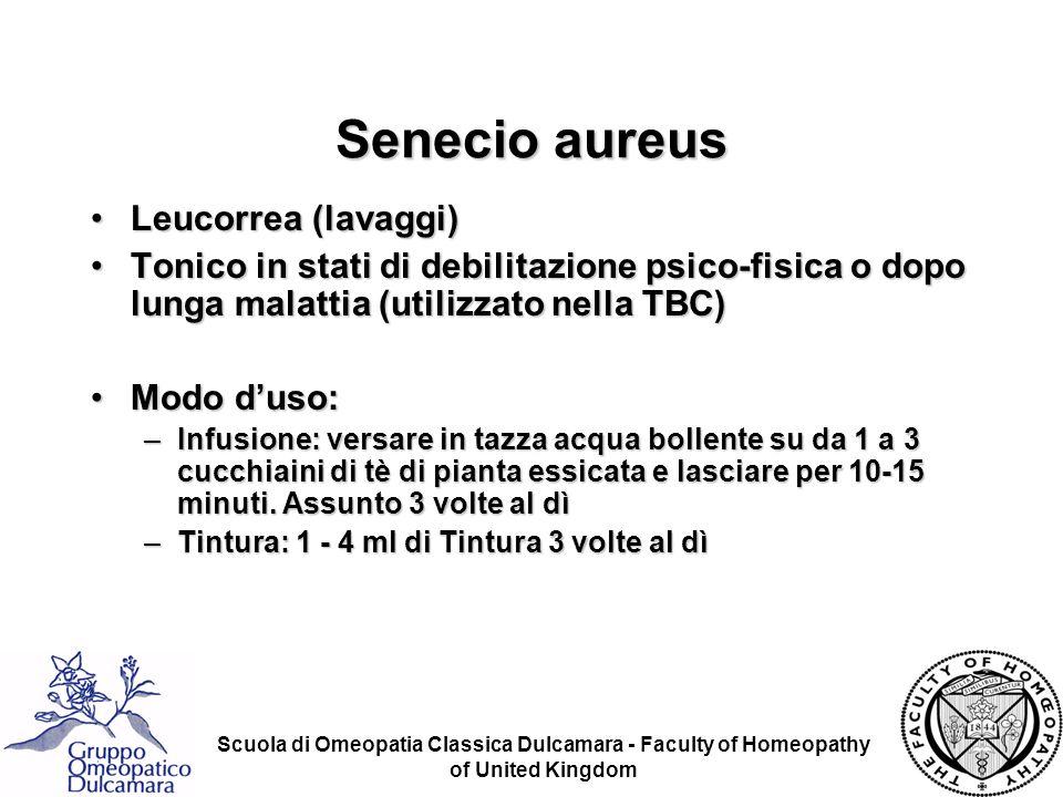 Senecio aureus Leucorrea (lavaggi)