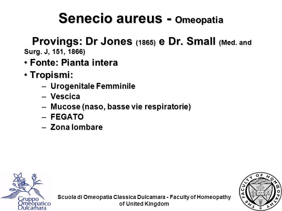 Senecio aureus - Omeopatia