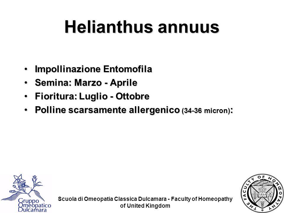 Helianthus annuus Impollinazione Entomofila Semina: Marzo - Aprile