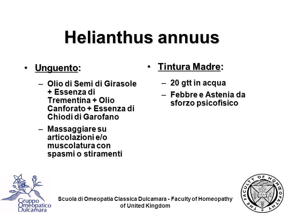 Helianthus annuus Unguento: Tintura Madre: