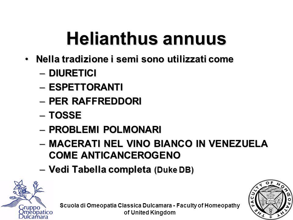 Helianthus annuus Nella tradizione i semi sono utilizzati come
