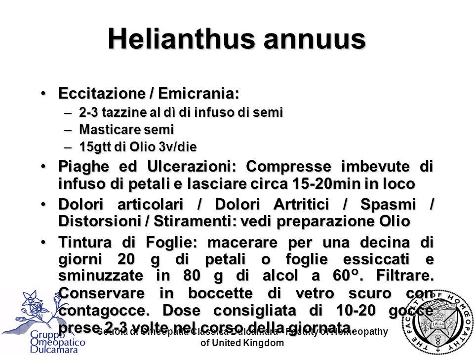 Helianthus annuus Eccitazione / Emicrania: