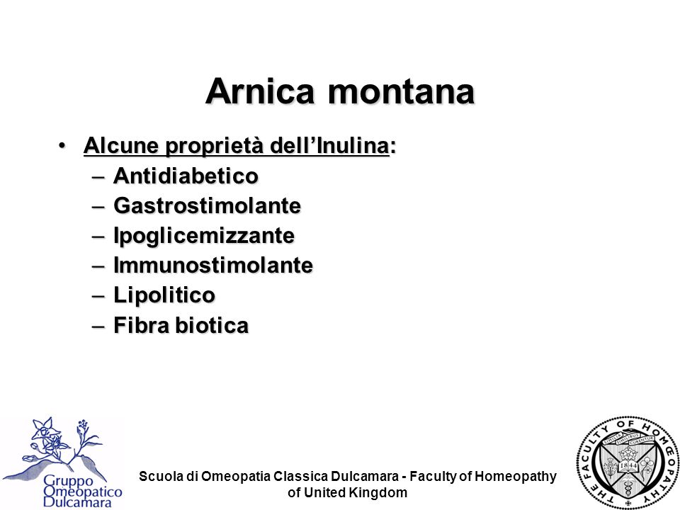 Arnica montana Alcune proprietà dell'Inulina: Antidiabetico