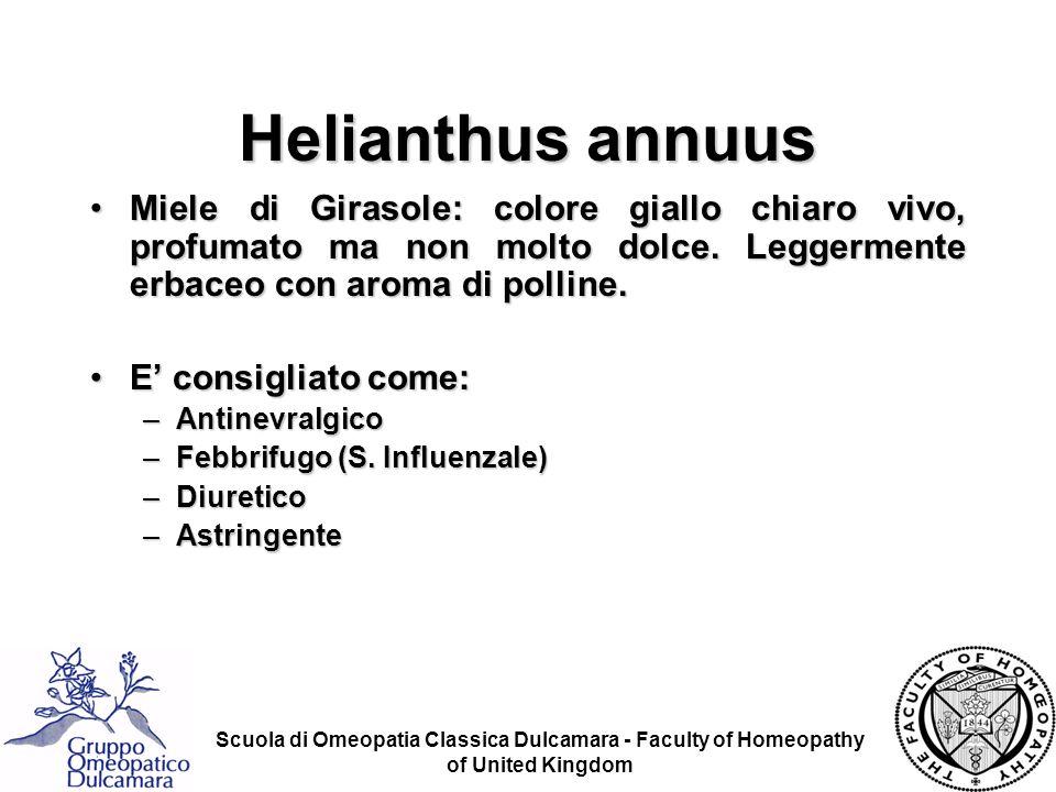 Helianthus annuus Miele di Girasole: colore giallo chiaro vivo, profumato ma non molto dolce. Leggermente erbaceo con aroma di polline.