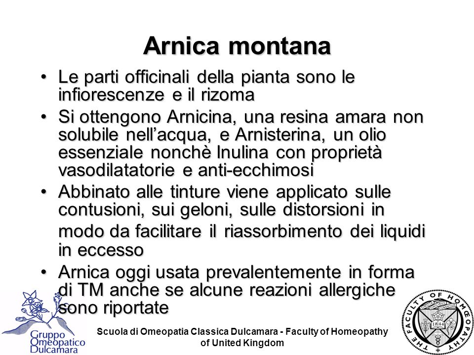 Arnica montana Le parti officinali della pianta sono le infiorescenze e il rizoma.