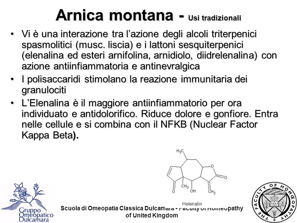 Arnica montana - Usi tradizionali