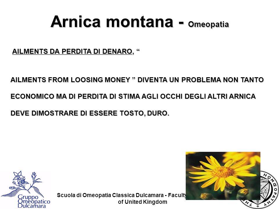 Arnica montana - Omeopatia