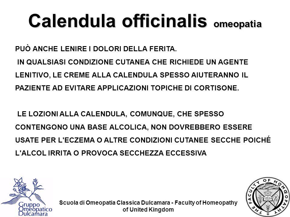 Calendula officinalis omeopatia