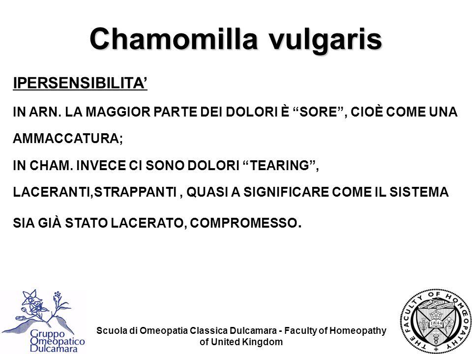 Chamomilla vulgaris IPERSENSIBILITA'