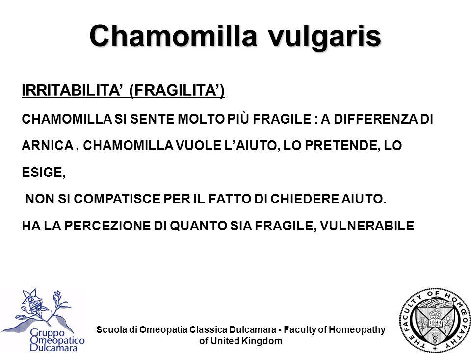 Chamomilla vulgaris IRRITABILITA' (FRAGILITA')