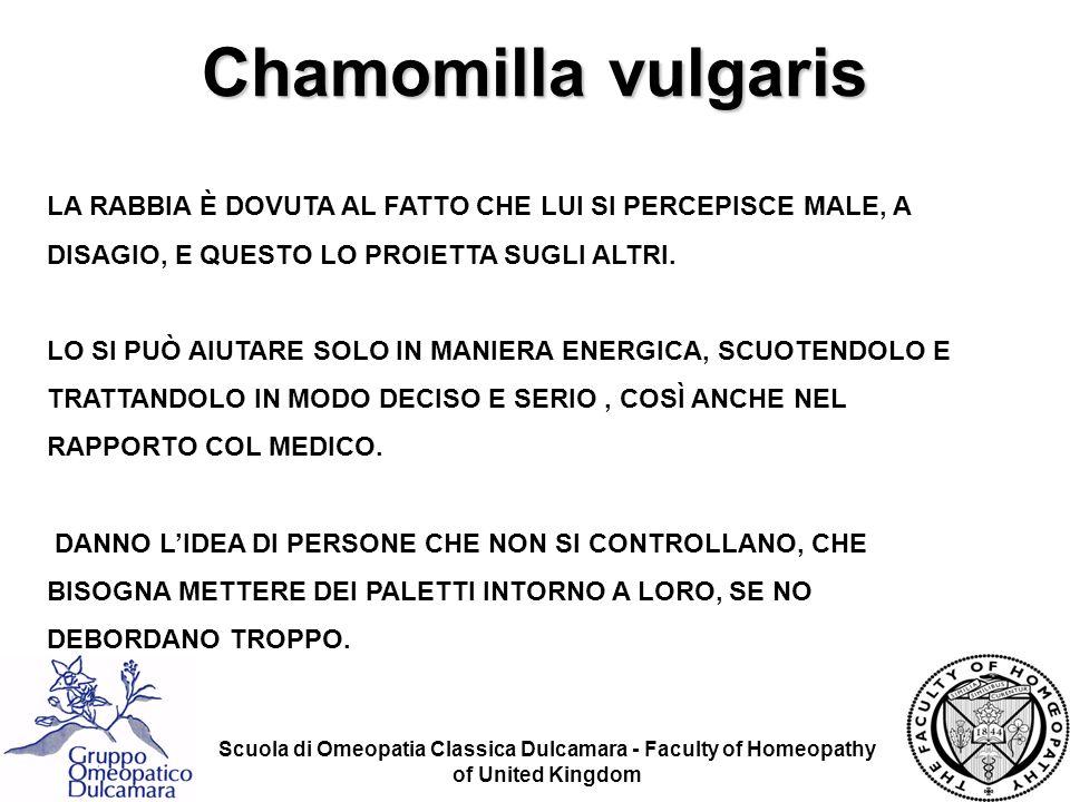 Chamomilla vulgaris LA RABBIA È DOVUTA AL FATTO CHE LUI SI PERCEPISCE MALE, A DISAGIO, E QUESTO LO PROIETTA SUGLI ALTRI.