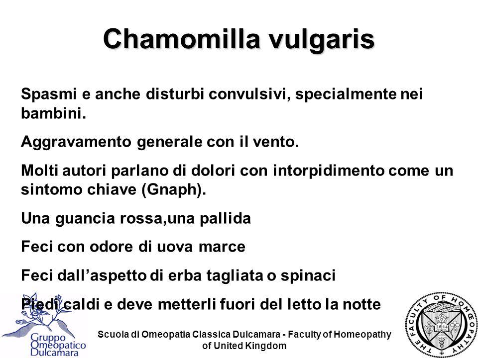 Chamomilla vulgaris Spasmi e anche disturbi convulsivi, specialmente nei bambini. Aggravamento generale con il vento.