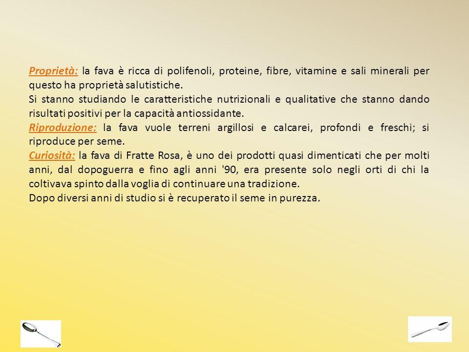 Proprietà: la fava è ricca di polifenoli, proteine, fibre, vitamine e sali minerali per questo ha proprietà salutistiche.